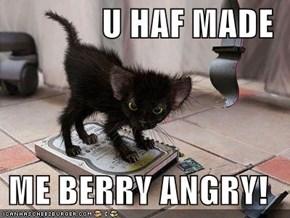 U HAF MADE   ME BERRY ANGRY!
