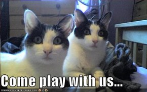 Come play with us...