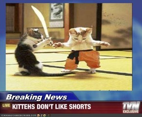 Breaking News - KITTEHS DON'T LIKE SHORTS
