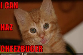 I CAN HAZ CHEEZBUGER
