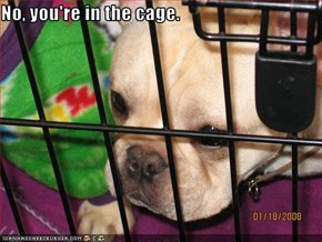 No, you're in the cage.