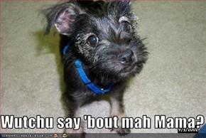 Wutchu say 'bout mah Mama?