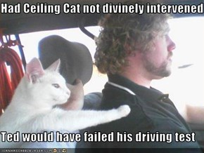 Had Ceiling Cat not divinely intervened  Ted would have failed his driving test