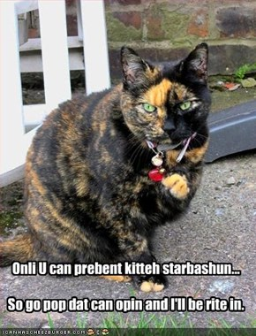 Onli U can prebent kitteh starbashun...  So go pop dat can opin and I'll be rite in.