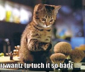 iz wantz tu tuch it so badz
