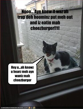 Nooo... Aye knew it waz ah trap deh hoominz put meh out and iz eatin mah cheezburger!!1!