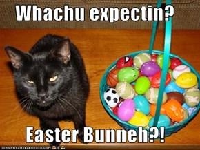 Whachu expectin?   Easter Bunneh?!