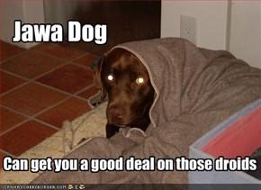 Jawa Dog