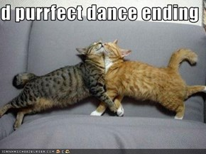 d purrfect dance ending