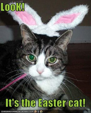 LooK!  It's the Easter cat!