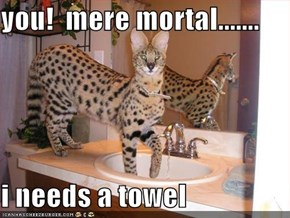 you!  mere mortal.......  i needs a towel