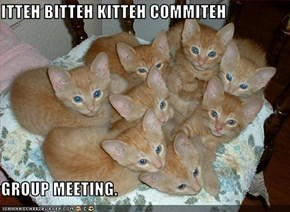 ITTEH BITTEH KITTEH COMMITEH  GROUP MEETING.