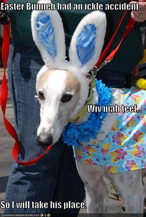 Easter Bunneh had an ickle accident... Wiv mah teef... So I will take his place.