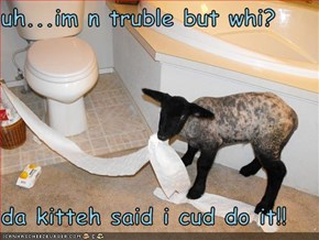 uh...im n truble but whi?  da kitteh said i cud do it!!