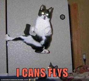 I CANS FLYS