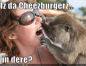 Iz da Cheezburgerz...   in dere?