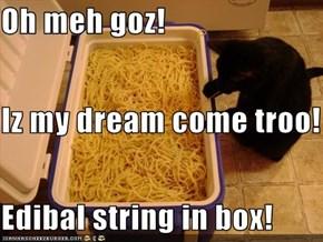 Oh meh goz! Iz my dream come troo! Edibal string in box!