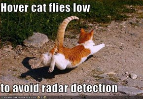 Hover cat flies low  to avoid radar detection