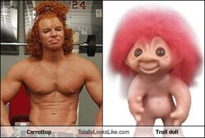 Carrottop Totally Looks Like Troll doll