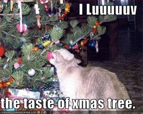 I Luuuuuv  the taste of xmas tree.