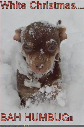 White Christmas.......  BAH HUMBUG!!