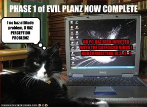 UR PC HAZ BEEN INFECTED WITH THE CATFLICKR VIRUS !  HDD FORMATTING IN 3...2...1