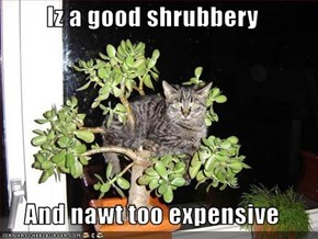 Iz a good shrubbery  And nawt too expensive
