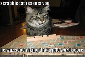 scrabblecat resents you  he wuz sooo taking that triple word score