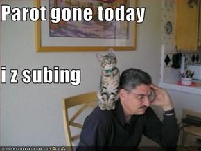 Parot gone today i z subing