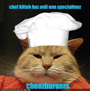 chef kitteh haz onli one specialteez