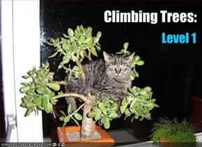 Climbing Trees: