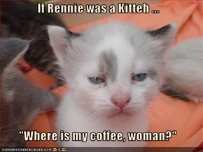 "If Rennie was a Kitteh ...  ""Where is my coffee, woman?"""