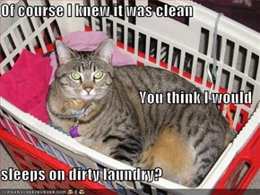 Of course I knew it was clean You think I would sleeps on dirty laundry?