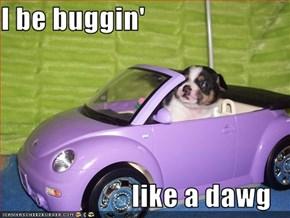 I be buggin'                         like a dawg