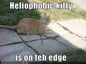 Heliophobic kitty  is on teh edge