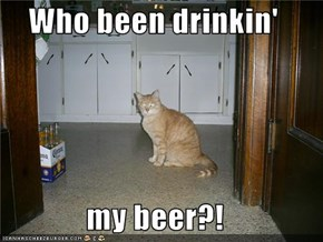 Who been drinkin'  my beer?!