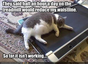 They said half an hour a day on the treadmill would reduce my waistline.