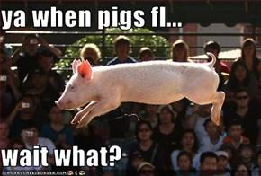 ya when pigs fl...  wait what?