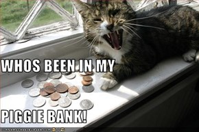 WHOS BEEN IN MY PIGGIE BANK!