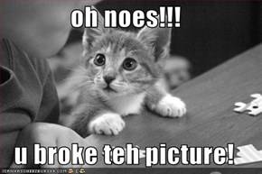oh noes!!!  u broke teh picture!