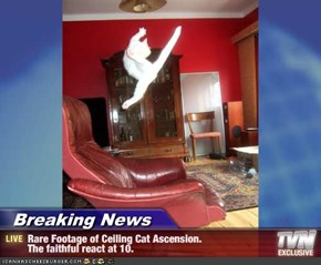Breaking News - Rare Footage of Ceiling Cat Ascension.   The faithful react at 10.
