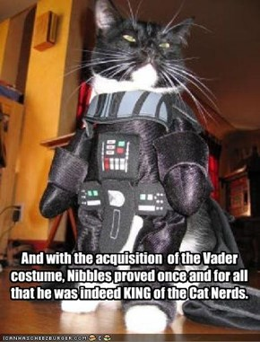 And with the acquisition  of the Vader costume, Nibbles proved once and for all that he was indeed KING of the Cat Nerds.