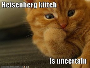 Heisenberg kitteh  is uncertain