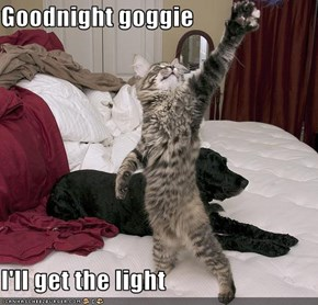 Goodnight goggie  I'll get the light