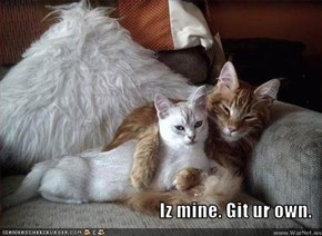 Iz mine. Git ur own.
