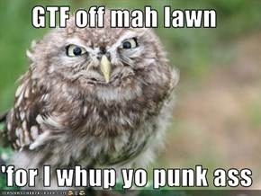 GTF off mah lawn  'for I whup yo punk ass