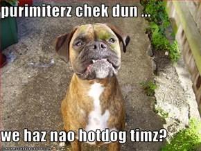 purimiterz chek dun ...  we haz nao hotdog timz?