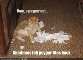 Dam, a payper cut...