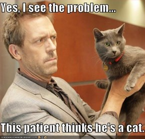 Yes, I see the problem...  This patient thinks he's a cat.