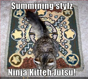 Summining stylz  Ninja Kitteh Jutsu!